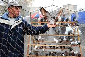 программа культурных мероприятий на день города Кременчуг